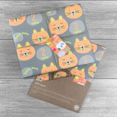 Birthday Tiger Giftwrap - Multiple colour choices
